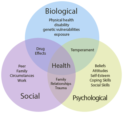 Biopsychosocial-model-of-health-2