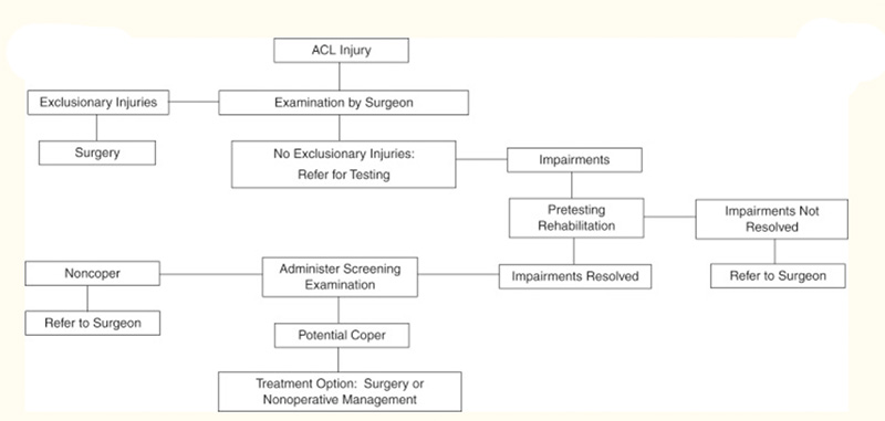 Figure 2. Algorithm for operative versus nonoperative treatment after an ACL injury from the Unversity of Delaware. Figure from Fitzgerald et al 2008.28