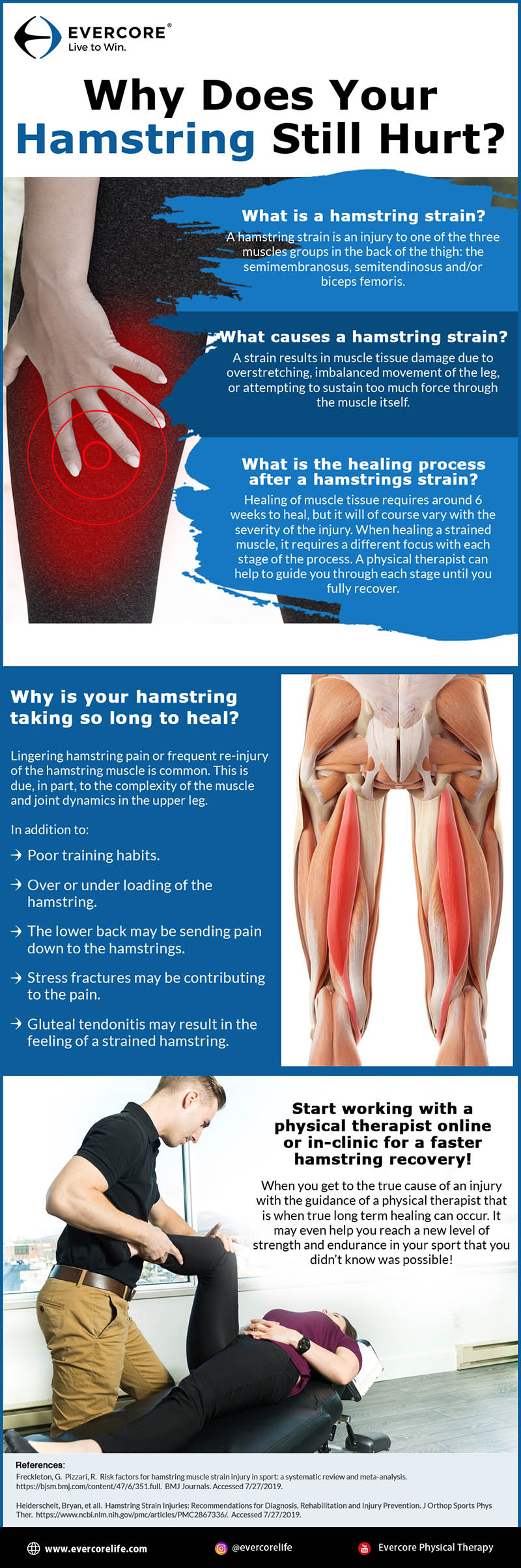 Why Does Your Hamstring Still Hurt infographic