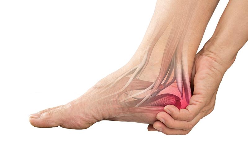 ankle heel